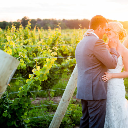 Grand-Bend-Wedding- Photography-Dark-Horse-Winery-Love-Sprouts-Photography